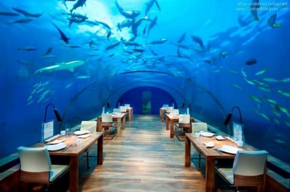 【一度でいいから泊まりたいホテル】総ガラス張りの水中レストランがあるホテル「コンラッド モルディブ ランガリ アイランド」はまさに南国の楽園