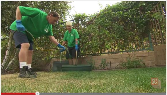 【どこの国?】枯れた芝生に緑の塗料を吹きかける「芝生塗装」が大人気! ホテルや式場で引っ張りダコ