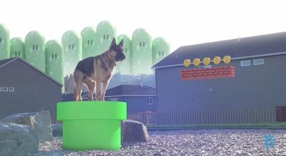 【スーパーワンコブラザーズ】犬がスーパーマリオの世界に入っても意外としっくりくることが判明