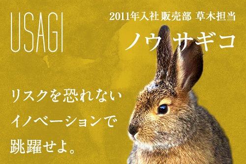 ②ウサギ (1)