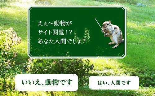 動物試験 天然水の森 人類以外採用 サントリー