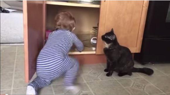 偶然?わざと? 『ニャンコが赤ん坊を閉じ込めちゃう動画』でネット界が意見対立「ニャンコも悪よのう」「ネコを悪く言うな!」