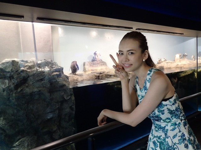 【最強デートスポット爆誕】水族館ってレベルじゃねぇ!『エプソン アクアパーク品川』で美女もメロメロ / さらに年パス4200円と激安