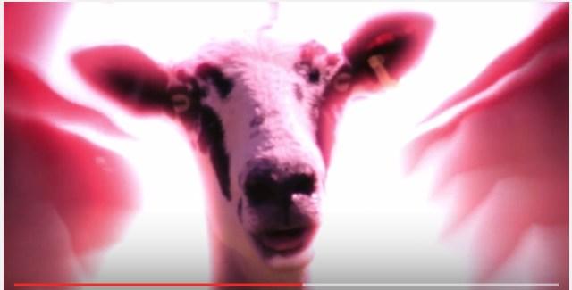 ドラゴンボールの名シーンを羊で再現した動画がスゴイ! 羊なのに緊張感がハンパないのはナゼだ!?