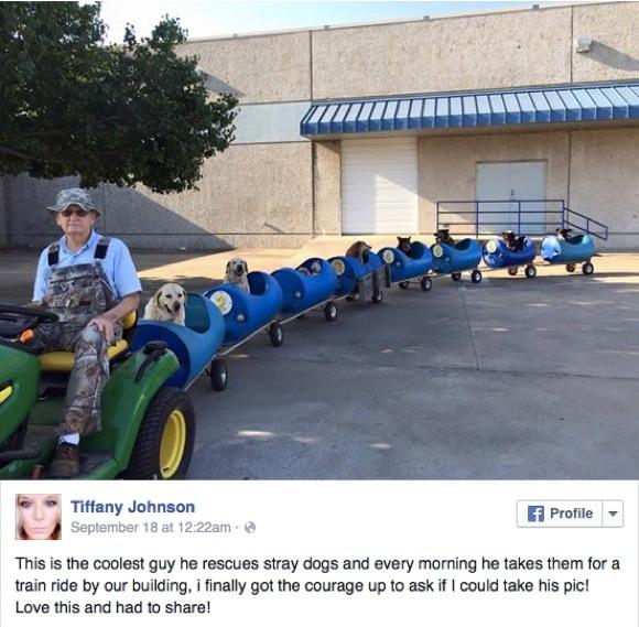 """【動画あり】捨て犬のために「列車」が町を走る! 80才運転手が運行を決めた """"心優しい"""" 理由とは?"""