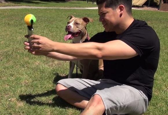 マジで欲しすぎる! 犬を確実にカメラ目線にさせるスマホグッズ「Pooch Selfie」が天才的発想だった!! これは全世界で発売すべき
