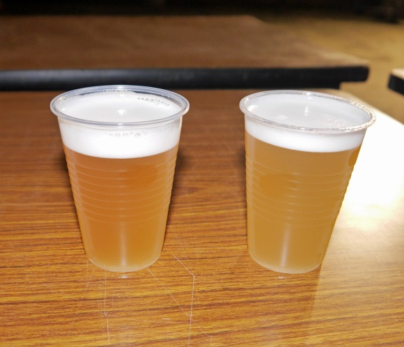 beerfes11