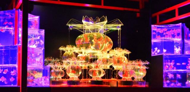 光の宝石箱や~! 国内最大級「京都二条城のアートアクアリウム」に行ってみた