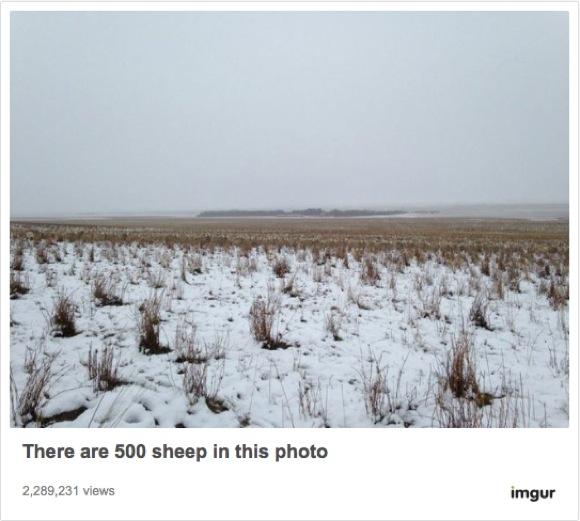"""【見える?】ただの """"草原の写真"""" なのに…… 「500匹の羊」が隠れているよ!"""