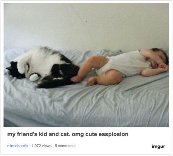 【奇跡の瞬間だらけ】ネコと人間の子供が一緒にいると……こうなるんだな〜!っていう動画&画像11選