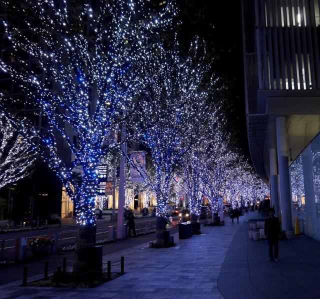 【一足お先にクリスマス】都内のイルミネーションの様子を確かめに行ってみた