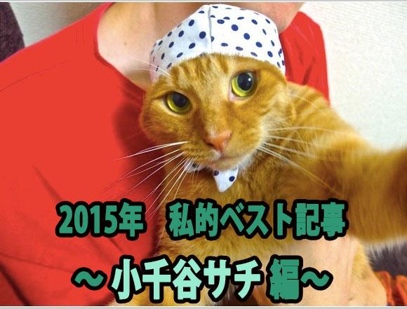 【私的ベスト】2015年に公開したもので記者がもっとも気に入っている記事5選 ~小千谷サチ編~
