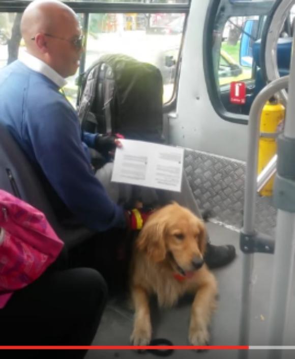 【動画あり】「盲導犬連れ込みNG!」 と言う無慈悲なバスドライバーに居合わせた乗客たちが猛反論 / その勇ましい姿が美しくてヒーローすぎる!!
