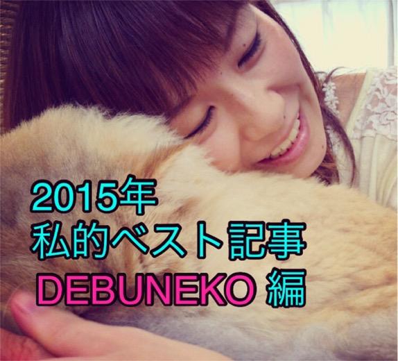 【私的ベスト】記者が厳選する2015年のお気に入り記事5選 〜DEBUNEKO編〜