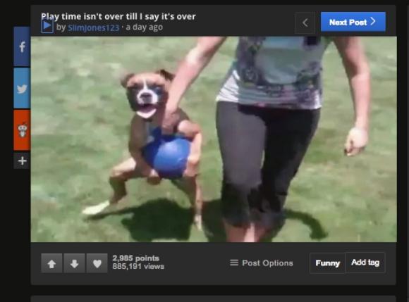 どうしてもボールで遊びたかった犬の必死の「抵抗」が何度見てもオモロ可愛い!