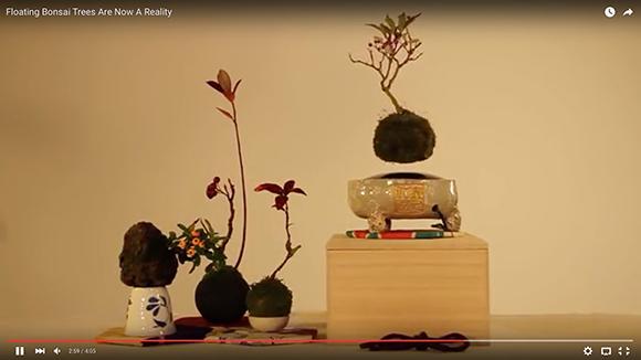 【動画あり】日本発! 宙に浮きながら回る「エア盆栽」が神秘的で最高にカッコイイ!!