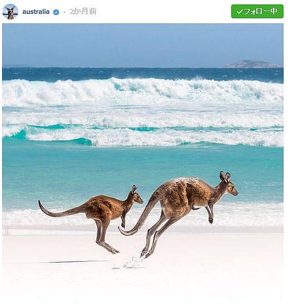眺めていたら「オーストラリアに行きたくなる」こと間違いナシ! 政府が運営するSNSの写真が超絶にアートしちゃっているぞ!!