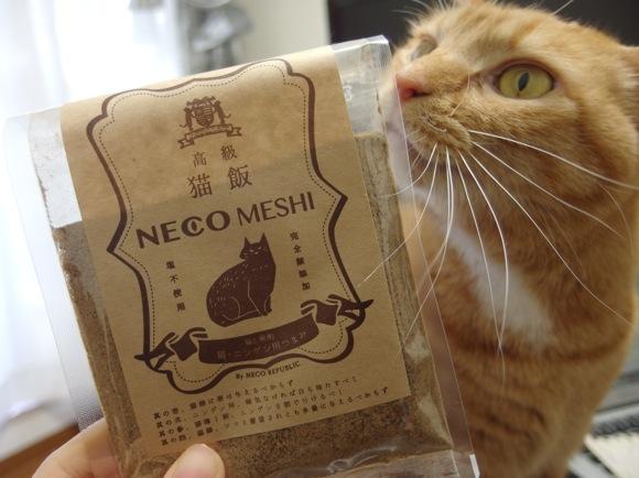 【正直レビュー】ネコ&人間が食べられるツマミ「猫飯」を飼いネコと一緒に食べてみた!