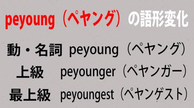 【教養】ペヤング(peyoung)の語形変化について / ペヤング・ペヤンガー・ぺヤンゲストの違いと表現方法