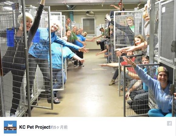 「これぞ最も幸せな動物シェルターだ!」と公開された写真に拍手喝采!!