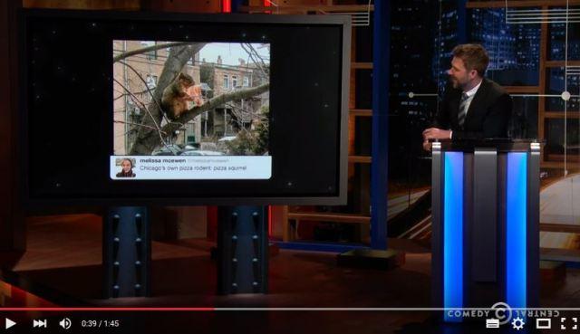 【キュートすぎ】木の上でピザにガッツくグルメなリスが激写! 「カワいすぎるじゃん」とネットで大人気に!!