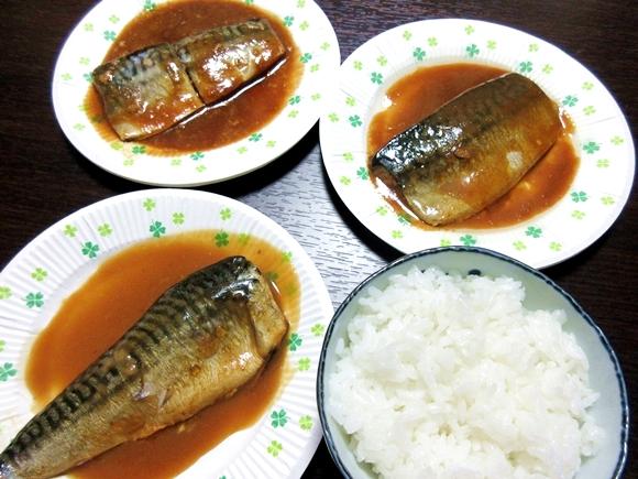 【サバの日】セブン、ファミマ、ローソンの「サバの味噌煮」の中でもっとも白いゴハンに合うのはどれか食べ比べてみた