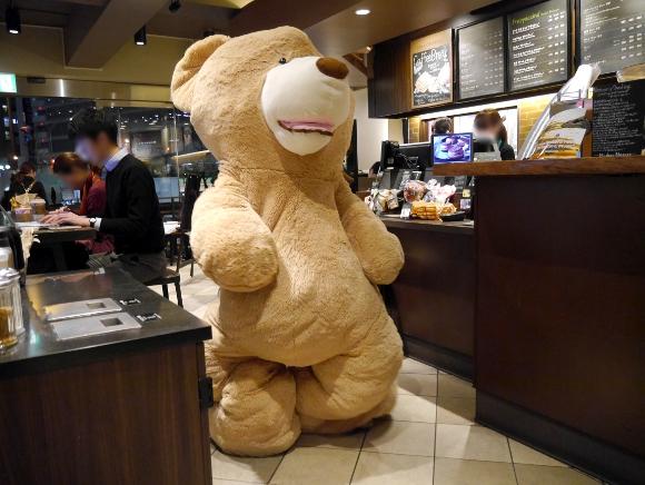 【超モテモテ】クマのぬいぐるみの中に入ってスタバに出かけてみた / 約30分で600回くらい「可愛い」って言われたクマー