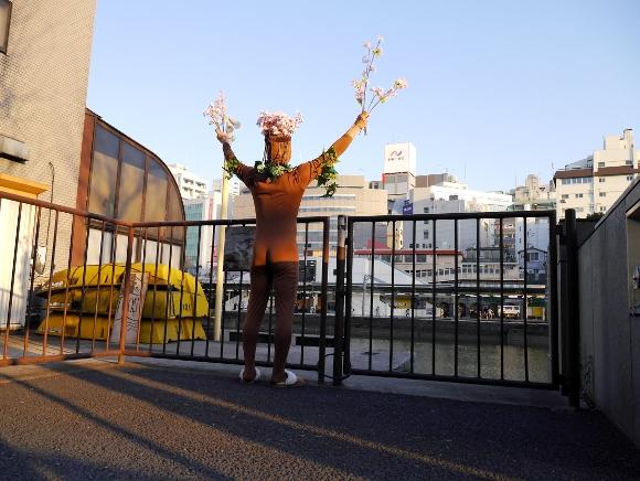【動画あり】日本最速の開花宣言! 桜が待ち切れない人のために「桜前線」になってきた