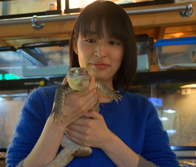爬虫類に触れあいまくれる喫茶『アゲイン』に行ってみた! 見たことも聞いたこともない生き物たちにヤミツキ確実!!