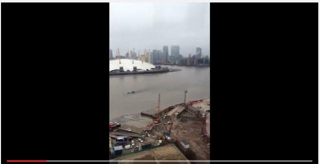 【オカルト動画】ロンドン・テムズ川に浮かぶ巨大な黒い影! これは一体何だ!?