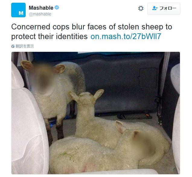 【なぜ?】警察が「盗まれた羊達」の顔にボカシを入れて公開