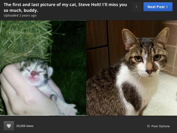 飼っている動物たちの「最初と最後の日」を並べた画像 11選
