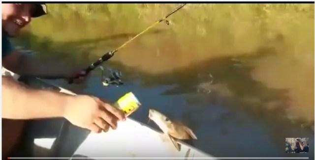 これマジか!? ボートにしがみついた魚にビールを与えたらゴクゴク飲んで笑った!