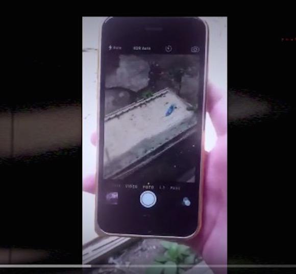 【閲覧注意動画】iPhoneの中から幽霊が発見される