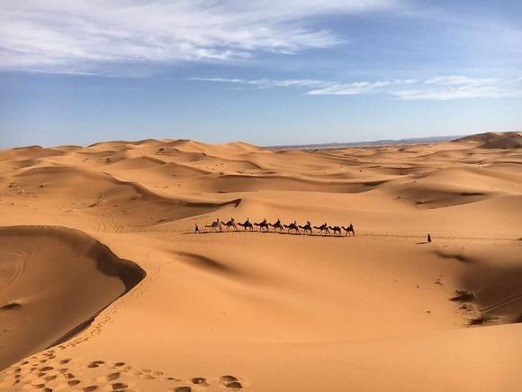 【実話】サハラ砂漠でガチの「ラクダ使い」に転職したでござる / ボロ小屋暮らしでも充実の毎日