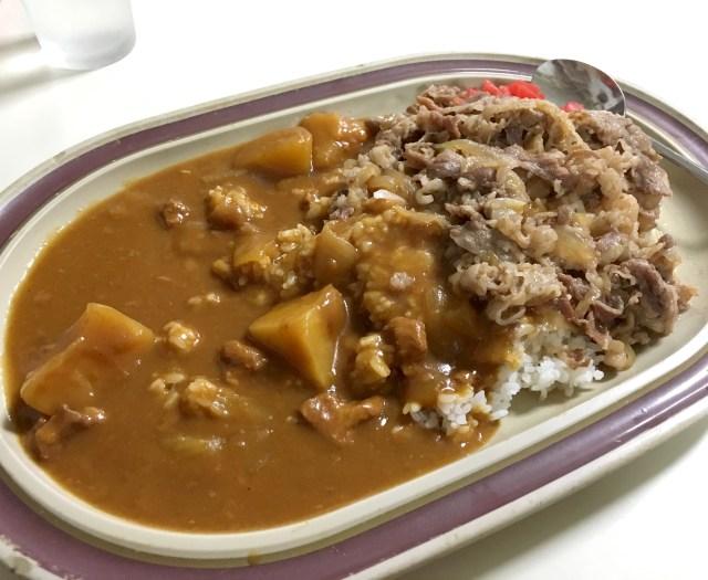 【カレー探求】高円寺駅高架下にある隠れた老舗食堂「タブチ」のカレー・牛丼は親しみを感じる味