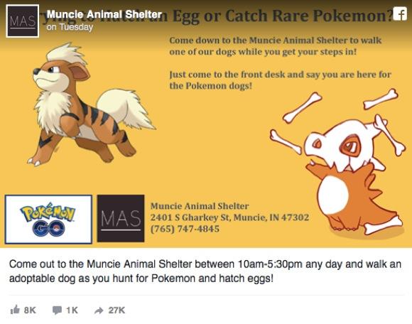 【ポケモンGOで犬助け】 動物シェルター「ポケモン探しながら捨てられたワンコの散歩をお願い」と呼びかけ / ネット上で「名案」との声集まる