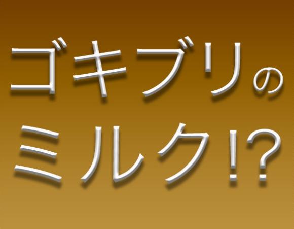 【衝撃】「ゴキブリのミルク」がヤバい / 食料危機の救世主?