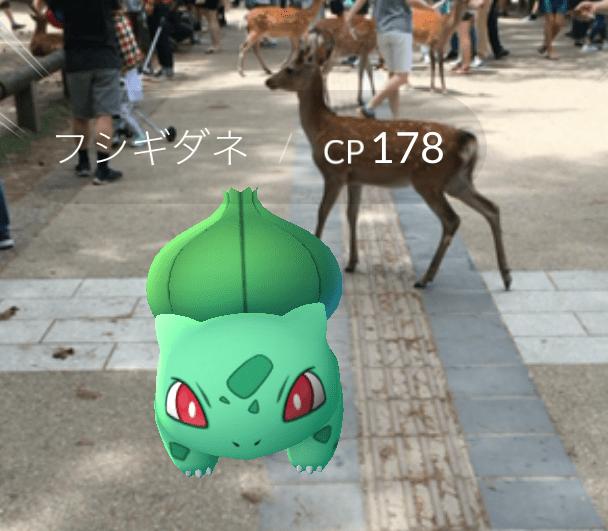 【ポケモンGO】奈良公園でプレイしてみたらレア度高めな「フシギダネ」に出会ったでござる! アイテムをくれるのは『お地蔵さん』だよ!!