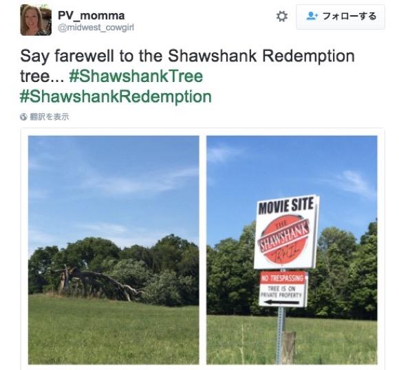"""傑作『ショーシャンクの空に』に登場した樹齢200年の木が真っ二つに! """"希望"""" を象徴する木が生存の危機にさらされる"""