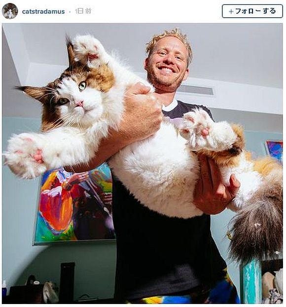 体長120センチで体重13キロの巨大ニャンコが甘やかされすぎ! その扱われ方はまさに殿様レベル!!