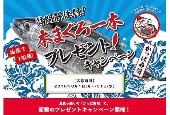 【松方弘樹もびっくり】160cmの本まぐろ1本が当たる! かっぱ寿司のクレイジーなキャンペーンに応募してみた!!