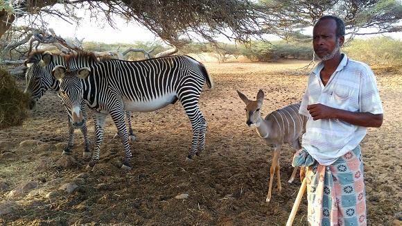 【アフリカ】地球で一番暑い国「ジブチ共和国」の動物園に行ったら背筋が凍った / 数年ぶりの全力疾走
