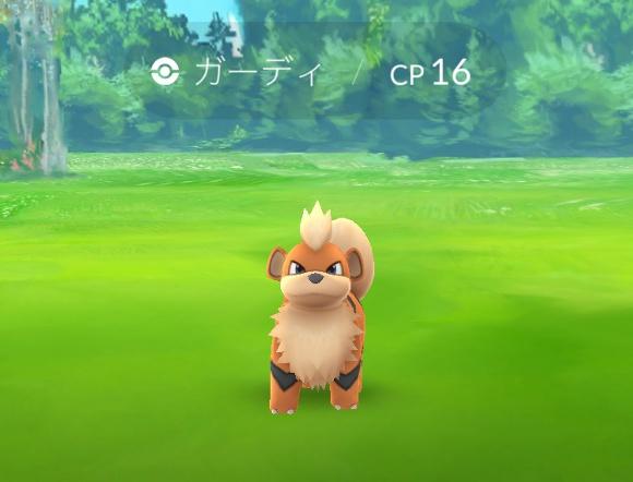 【ポケモンGO攻略】「東京屈指のガーディの巣」とウワサの『東綾瀬公園』が静かにアツい