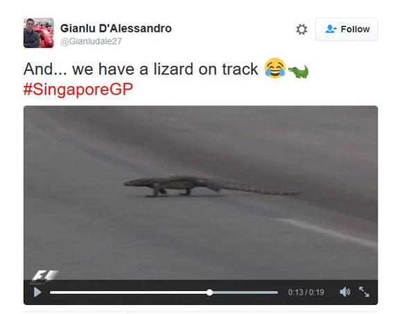 【動画あり】F1レース中に恐竜のようなオオトカゲが乱入 → 堂々と横断