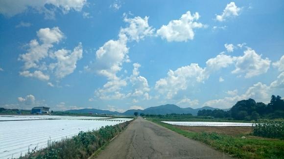 【マジかよ】長野県には台風が来ない説