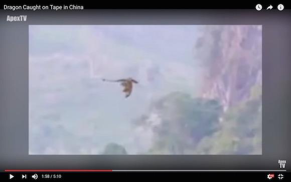 【新種か】中国の山奥でドラゴンのような未確認生物が撮影される
