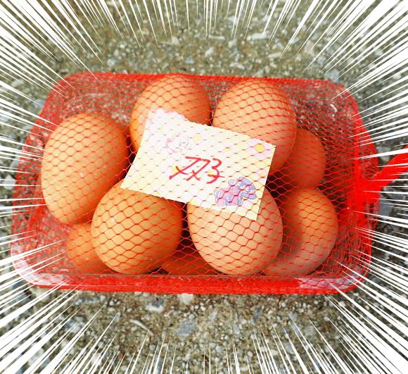【検証】卵の自動販売機で「双子」と書かれた卵11個入りを購入 / 全部割って確かめてみた