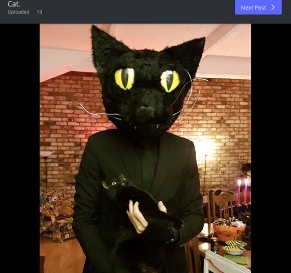 「誰ニャ……!?」猫に仮装した飼い主にニャンコご本人がビックリ! キョトンとした表情がカワエエ
