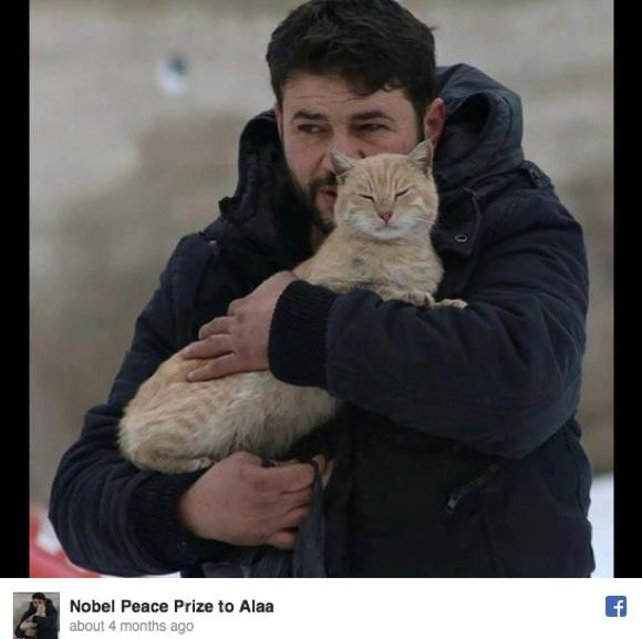 シリア空爆で「100匹の猫がいる保護施設」が被害 / 空爆動画など被害状況がSNSで報告される